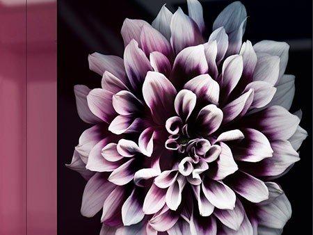 Kundenspezifische RAL-Farbe / kundenspezifischer Bilddruck